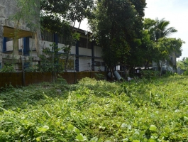 232 LOT FOR SALE in Surigao City