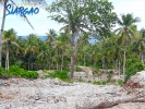 1,404 sqm Overlooking Pacific Ocean view Lot in Burgos Siar