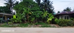 230 sqm Siargao Commercial or Residential Lot For Sale